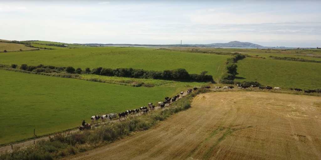 Erw Fawr Farm